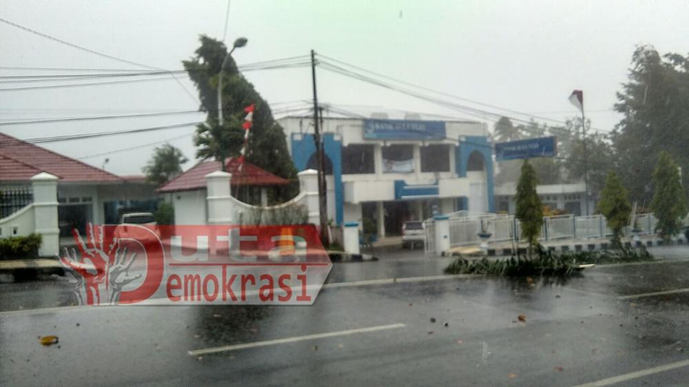 Waspada, Hujan Disertai Angin Kencang, Porak-Poranda Pepohonan