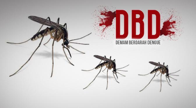 15 Warga Kotamobagu Menderita DBD