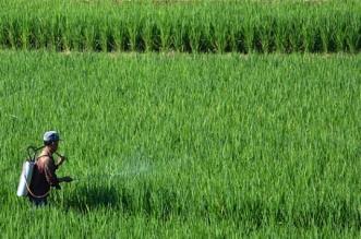 Brigade Pertanian Kawal Poktan 2017